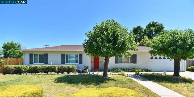 31 Audrey Ln, Pleasant Hill, CA 94523 (#40826720) :: RE/MAX Blue Line