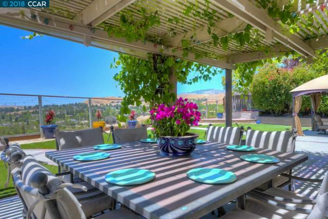 243 Viewpoint Dr, Danville, CA 94506 (#40826903) :: The Lucas Group