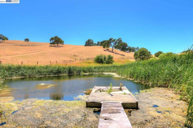 7021 Briones Valley Rd, Clayton, CA 94517 (#40826934) :: Armario Venema Homes Real Estate Team