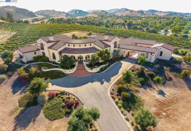 301 Kalthoff Common, Livermore, CA 94550 (#40827110) :: Armario Venema Homes Real Estate Team