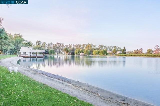 1000 Petite Sirah Ln, Brentwood, CA 94513 (#40828632) :: Armario Venema Homes Real Estate Team