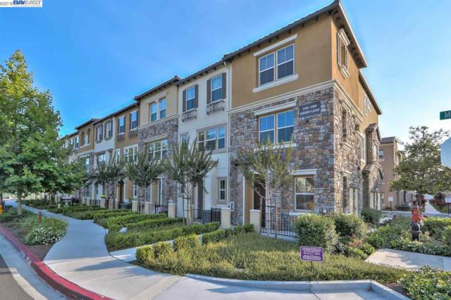 1361 Merry Loop, Milpitas, CA 95035 (#40828992) :: The Grubb Company
