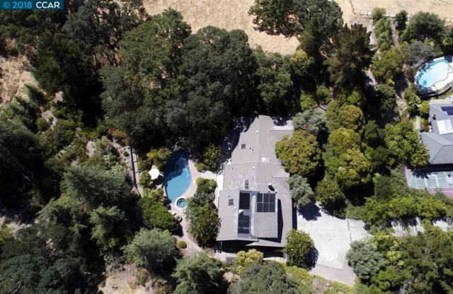 72 Mott Drive, Alamo, CA 94507 (#40829610) :: Estates by Wendy Team