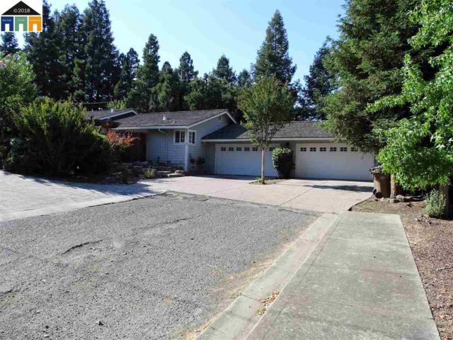 289 Croyden Dr, Pleasant Hill, CA 94523 (#40830153) :: Estates by Wendy Team