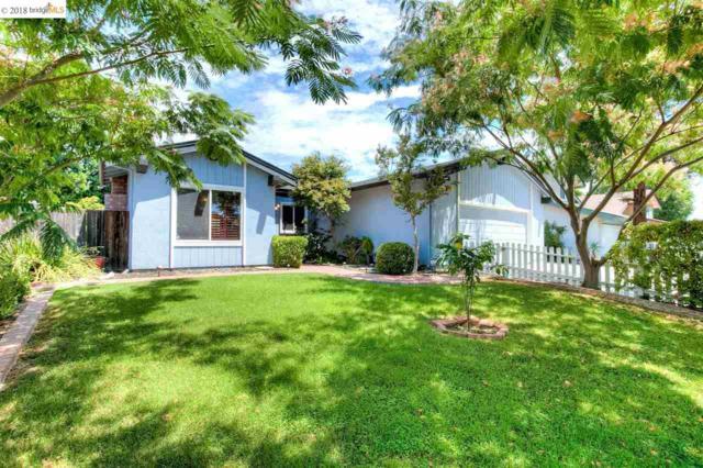 46 Cloverleaf Cir, Brentwood, CA 94513 (#40830323) :: Estates by Wendy Team