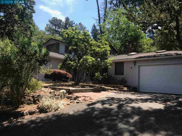 16 Rheem Blvd, Orinda, CA 94563 (#40830331) :: Armario Venema Homes Real Estate Team