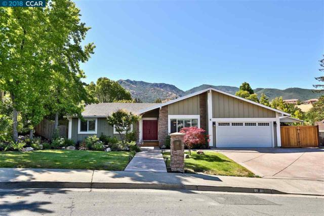 8 Malibu Ct, Clayton, CA 94517 (#40830373) :: J. Rockcliff Realtors