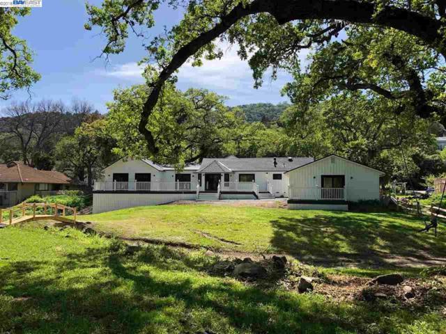 7402 Foothill Road, Pleasanton, CA 94566 (#40830476) :: Armario Venema Homes Real Estate Team
