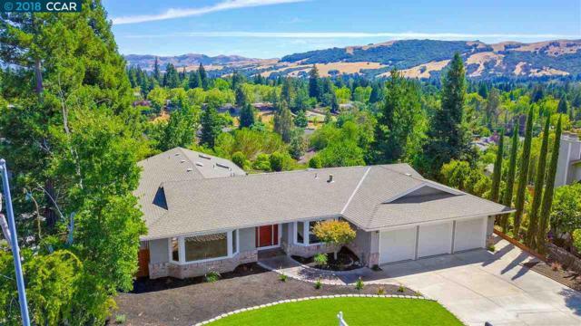 973 Richard Ln, Danville, CA 94526 (#40830726) :: Armario Venema Homes Real Estate Team