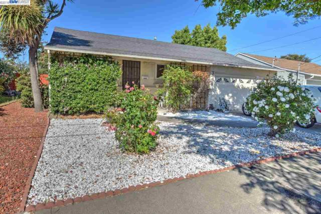 3442 Monterey Blvd, San Leandro, CA 94578 (#40830932) :: Armario Venema Homes Real Estate Team