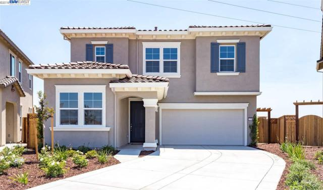 1548 S Mattina St, Tracy, CA 95391 (#40831408) :: Armario Venema Homes Real Estate Team