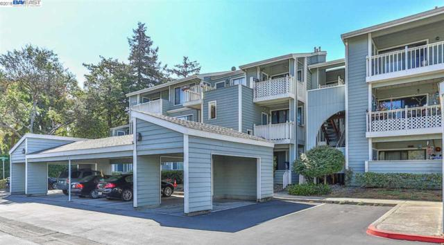 3416 Deerwood Ter #112, Fremont, CA 94536 (#40831506) :: Armario Venema Homes Real Estate Team