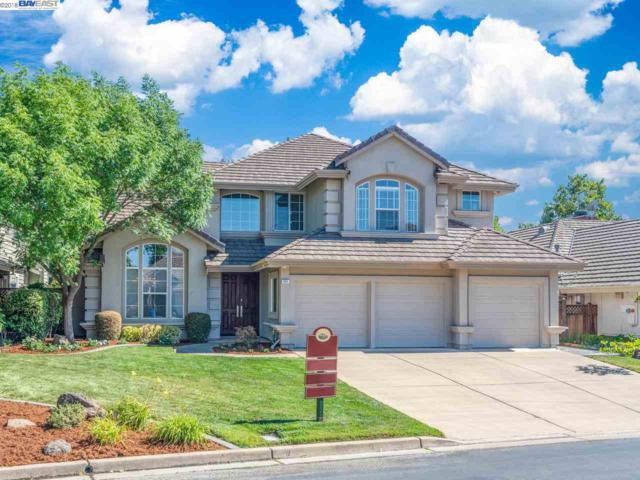 463 Montori Ct, Pleasanton, CA 94566 (#40831628) :: Armario Venema Homes Real Estate Team