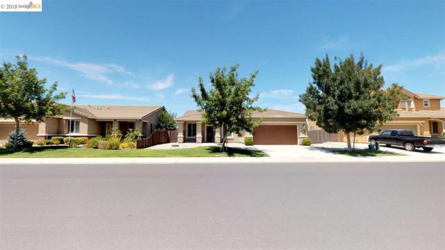 333 Catmint, Manteca, CA 95337 (#40831796) :: Estates by Wendy Team