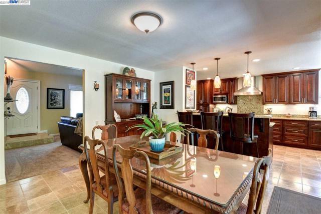 1181 Vintner Way, Pleasanton, CA 94566 (#40832878) :: Armario Venema Homes Real Estate Team