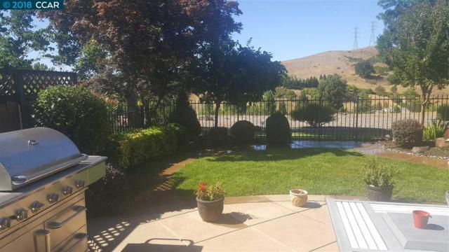340 S Eagle Nest Lane, Danville, CA 94506 (#40833103) :: Estates by Wendy Team