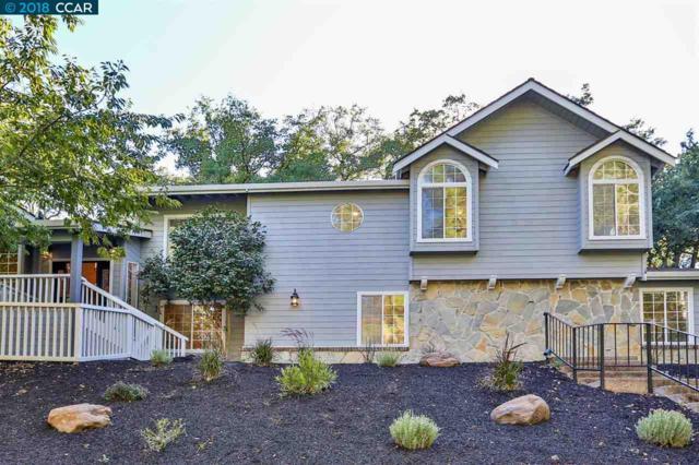 855 Kirkcrest Rd, Alamo, CA 94507 (#40833285) :: Armario Venema Homes Real Estate Team