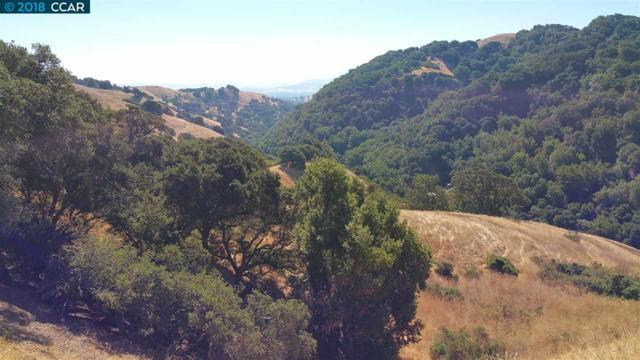 5720 Alhambra Valley Rd, Martinez, CA 94553 (#40833312) :: Estates by Wendy Team