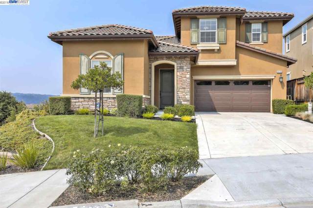 5112 Montiano Ln, Dublin, CA 94568 (#40833507) :: Estates by Wendy Team