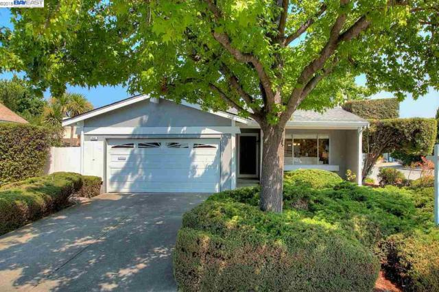 2525 Ann St, Fremont, CA 94536 (#40833579) :: Armario Venema Homes Real Estate Team