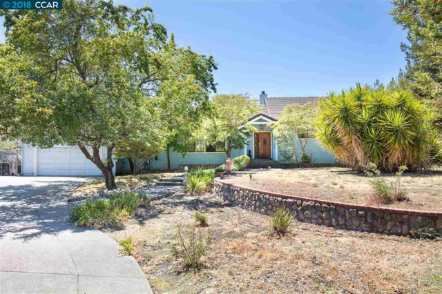 1240 Culet Ranch Rd, Danville, CA 94506 (#40833599) :: Armario Venema Homes Real Estate Team