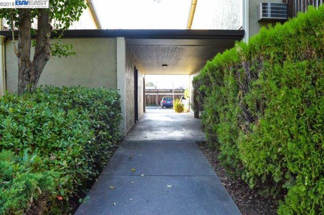 1060 Oak Grove Rd #56, Concord, CA 94518 (#40834135) :: Armario Venema Homes Real Estate Team