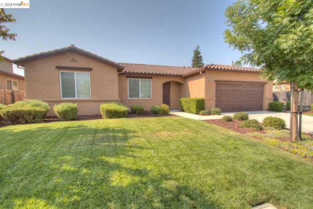 1309 Tuolumne Way, Oakley, CA 94561 (#40834467) :: Armario Venema Homes Real Estate Team