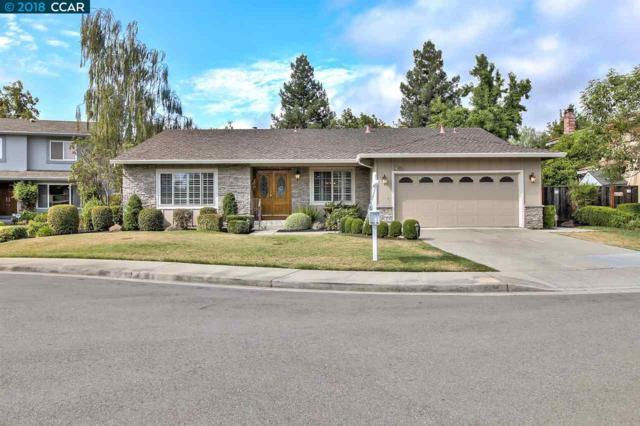 3420 Virgil Cir, Pleasanton, CA 94588 (#40834497) :: Armario Venema Homes Real Estate Team