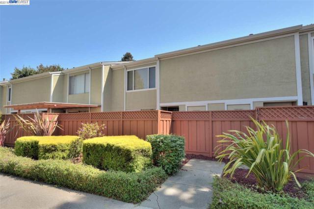 4537 Capewood Ter, Fremont, CA 94538 (#40834655) :: Armario Venema Homes Real Estate Team