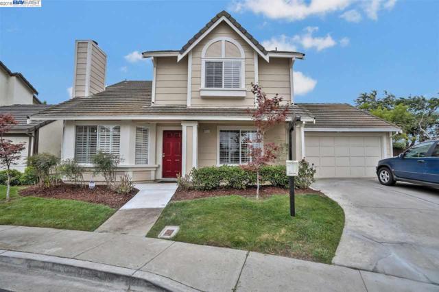 34101 Gannon Ter, Fremont, CA 94555 (#40834670) :: Armario Venema Homes Real Estate Team