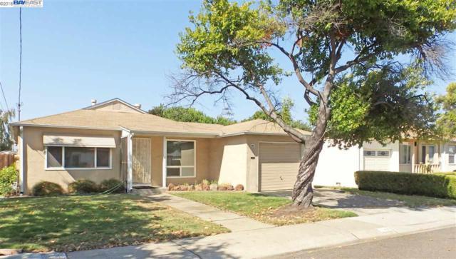 1143 Devonshire Ave, San Leandro, CA 94579 (#40834818) :: Armario Venema Homes Real Estate Team