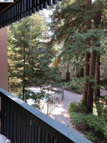 155 Sharene Ln #203, Walnut Creek, CA 94596 (#40834867) :: Armario Venema Homes Real Estate Team