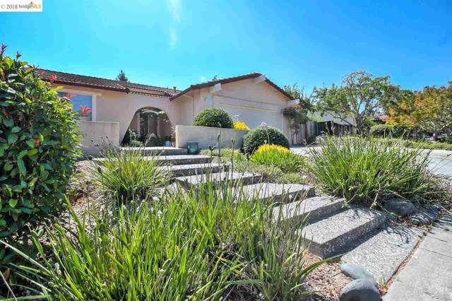 5733 Skyview Pl, Richmond, CA 94803 (#40834933) :: Armario Venema Homes Real Estate Team
