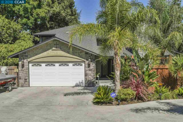 5297 Pine Hollow Rd, Concord, CA 94521 (#40834964) :: RE/MAX Blue Line
