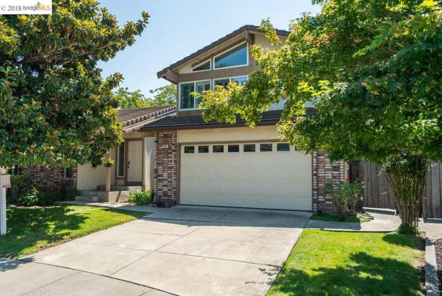 4820 Pipit Ct, Pleasanton, CA 94566 (#40835034) :: Armario Venema Homes Real Estate Team