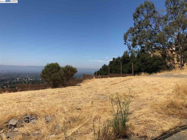 769 Boulder Dr, San Jose, CA 95132 (#40835040) :: RE/MAX Blue Line