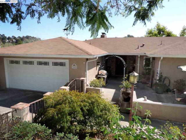 24845 Canyon View Ct, Hayward, CA 94541 (#40835085) :: Armario Venema Homes Real Estate Team