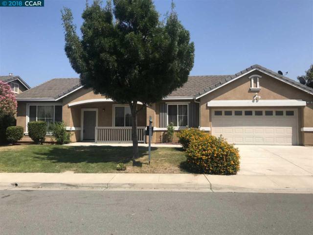 569 Silver Saddle Dr, Pittsburg, CA 94565 (#40835202) :: Armario Venema Homes Real Estate Team