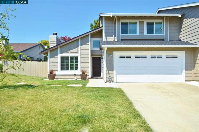 304 Lake Brook Ct, Martinez, CA 94553 (#40835216) :: Armario Venema Homes Real Estate Team