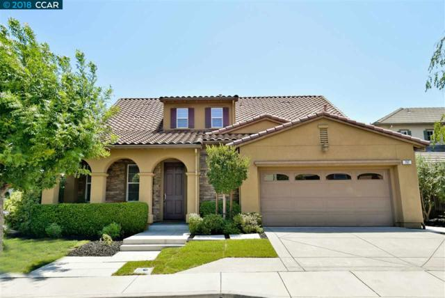 707 Bowen Ct, San Ramon, CA 94582 (#40835431) :: Armario Venema Homes Real Estate Team