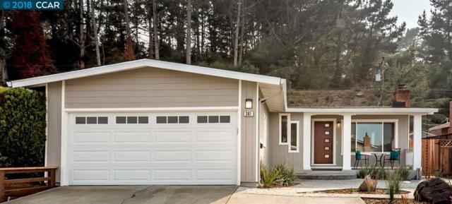 361 Fernwood Dr, San Bruno, CA 94066 (#40835878) :: Estates by Wendy Team
