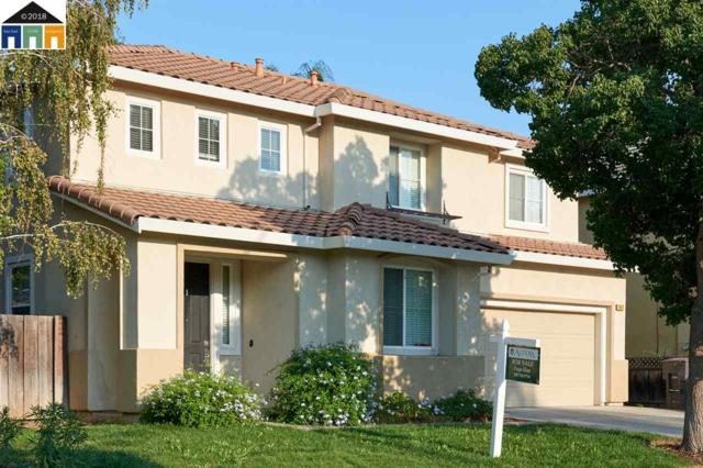 352 Golden Leaf Ct, Tracy, CA 95377 (#40836406) :: Armario Venema Homes Real Estate Team