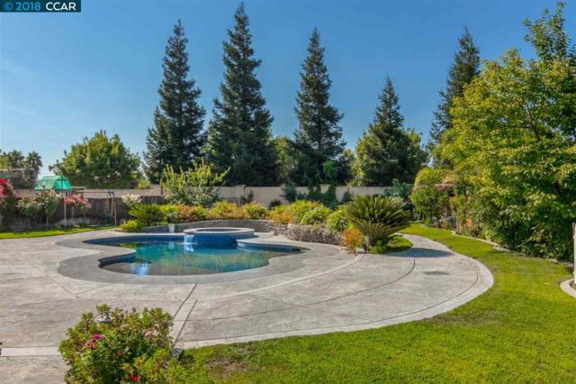 2733 Gilberte Ct, Tracy, CA 95304 (#40836487) :: The Lucas Group
