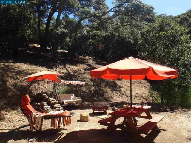 0 Parkway, Sunol, CA 94586 (#40836681) :: Estates by Wendy Team