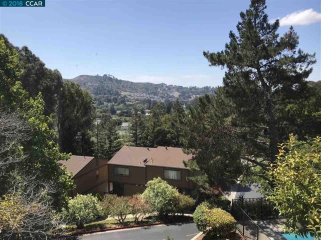543 Chabre Ct, El Sobrante, CA 94803 (#40836852) :: Armario Venema Homes Real Estate Team