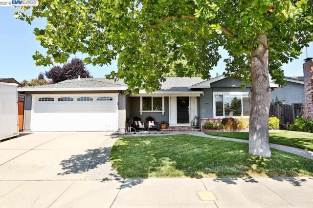 6867 Corte Salcedo, Pleasanton, CA 94566 (#40837257) :: Armario Venema Homes Real Estate Team