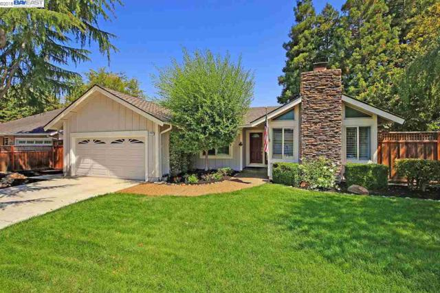 2744 Sanderling Way, Pleasanton, CA 94566 (#40837347) :: Armario Venema Homes Real Estate Team