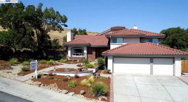 11150 Brittany Ln, Dublin, CA 94568 (#40837402) :: Estates by Wendy Team
