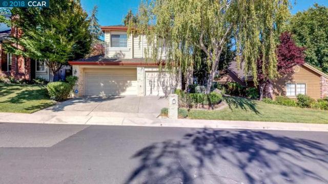 1138 Canyon Hills Rd, San Ramon, CA 94582 (#40837526) :: Estates by Wendy Team