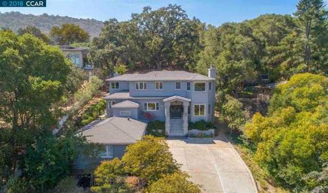 7 Castledown Rd, Pleasanton, CA 94566 (#40837689) :: Armario Venema Homes Real Estate Team